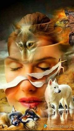 Native American Wolf, Native American Pictures, Native American Artwork, Fantasy Wolf, Fantasy Art Women, Beautiful Wolves, Beautiful Gif, Native American Spirituality, Wolves And Women