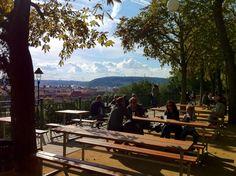 Letná Beer Garden 1100 - 2300