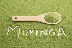¿Sabes qué es la moringa, cómo te ayuda combatir el #estrés y a #reforzar tu #sistema #inmunitario? #Moringa