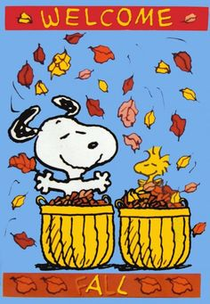 I fall more in love with the season every year. No pun intended. Peanuts Cartoon, Peanuts Snoopy, Snoopy Cartoon, Snoopy Halloween, Fall Halloween, Halloween Rocks, Snoopy Christmas, Charlie Brown Thanksgiving, Vintage Thanksgiving