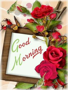 Good Morning Msg, Good Morning Greetings, Morning Wish, Good Morning Images, Good Night Image, Beautiful Morning, Spiritual Inspiration, Holiday, Encouragement