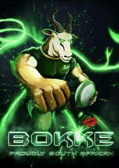Springboks - Rugby South Africa