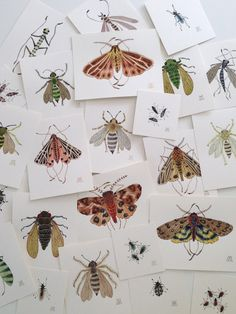 A collection of critters: bees, tiger moths and cicadas, tiny watercolor paintings by GollyBard