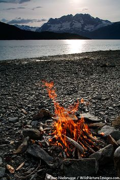 Going to Westport with family this summer. Can't wait to make a beach fire pit!!!