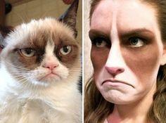 This grumpy cat costume is hilarious.