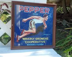 """Vintage Pepper Brand Citrus Fruit Label Framed 1940s $22.00 