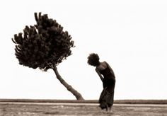 leaning tree and woman