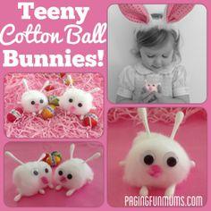 Teeny Cotton Ball Bunnies – Jenni