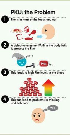 PKU Food Guide Pyramid | PKU Ideas/Tips | Pinterest | Infographic ...