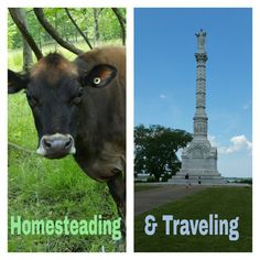 http://essentialhomestead.com/can-homesteaders-travel/