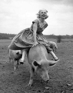 Horse racing commentator Joanne Mathews takes a break from the horses and has some fun with a local pig. March (Photo by John Pratt/Keystone Features) Vintage Pictures, Old Pictures, Vintage Images, Old Photos, Funny Pictures, Art Costumes, Bad Family Photos, Retro, Vintage Photographs