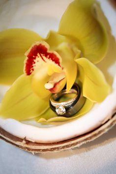 hawaiian destination wedding // cyndi hardy photography he-stole-my-heart-so-i-stole-his-last-name Hawaiian Destination Weddings, Hawaii Wedding, Honeymoon Vacations, Hawaii Honeymoon, Caribbean Party, Destin Beach, Beach Blanket, Mellow Yellow, Back Home