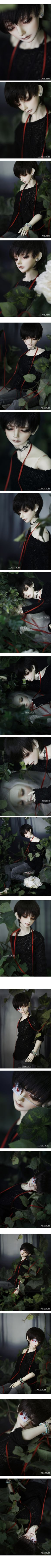 CROSS † AMBITION - BJD CROBI