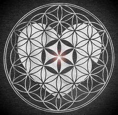 ❀❁~ Flor de la Vida~❁❀ Δ✡~GeometríaSagrada~✡Δ۞ Más