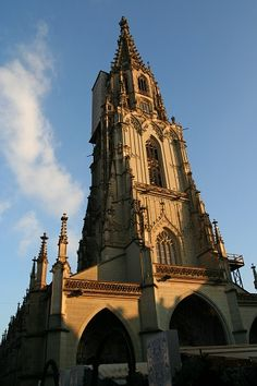 Munster (Bern Switzerland) * Climb the tower (cost 5sf) for an amazing view of the city and alps.