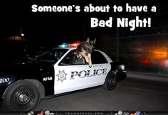 Wow LOL Be safe at night, sleep with a cop! Description from pinterest.com. I searched for this on bing.com/images