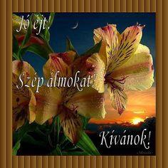 JÓ ÉJT! - donerika.lapunk.hu Good Morning Good Night, Humor, Painting, Google, Art, Art Background, Humour, Painting Art, Kunst