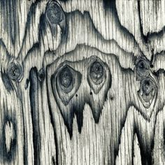 exaggerated  wood grain.