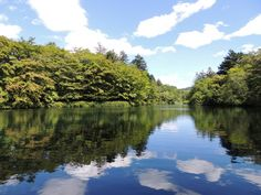 Kumoba-ike. Karuizawa, Japan | 雲場池 軽井沢 Japanese, River, Outdoor, Outdoors, Japanese Language, Outdoor Games, The Great Outdoors, Rivers