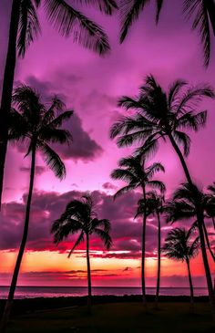 I have a picture just like this from the beach on Maui, Hawaii!  The most beautiful  sunsets there! - MFB