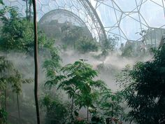 The Eden Project, Cornwall, England, Michael Pawlyn -- Largest greenhouse in the world and inspired by biomimicry.  Looking to nature to see that geodesics are the most effective way to create a spherical surface.