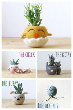 HAPPY CHICK / Filz saftigen Pflanzer / Kaktus Vase / Tiere Pflanzer / Senf gelb / Dekor Ostern / Frühling Geschenk - wählen Sie Ihre Farbe!