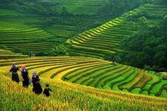 Itinerario de viaje a Vietnam y sudeste asiático en 72 días de Nerea y Cris