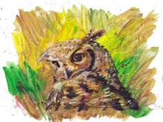 Spotted Eagle Owl by Lauriesju6493377 in Painting Wildlife: Acrylic Mixed Media. Craftsy.com