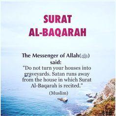 543 Best Dini Quates Images Allah Islam Muslim Quotes Islam Quran