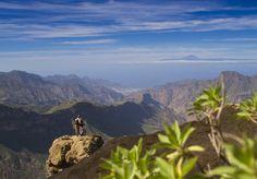 Primavera en nuestro blog   #Gran Canaria #Canarias
