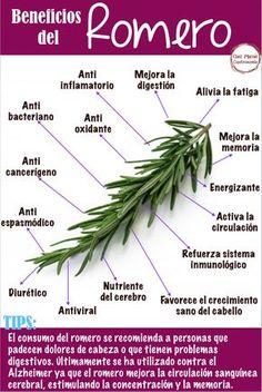 Natural Health Remedies, Natural Cures, Natural Healing, Herbal Remedies, Health Facts, Health And Nutrition, Health And Wellness, Natural Medicine, Herbal Medicine