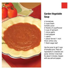 Garden Vegetable soup with Juicer