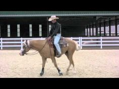 Teaching neck reining// love this guy! All his videos are so helpful and I love his techniques!
