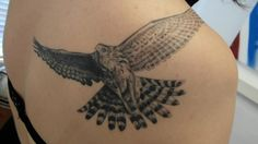 Juvenile Goshawk. Tattoed by Verb from L'extremiste in Arnhem, the Netherlands. She also works in the US.