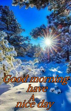 Good morning sister and yours, have a lovely Sunday ,God bless 💕💖🌹 Good Morning Video Songs, Good Morning Messages, Good Morning Good Night, Day For Night, Good Morning Sister, Good Morning Friends, Good Night Wishes, Good Night Sweet Dreams, Good Day Quotes