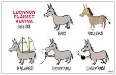 Eläinlajit 92 Finnish Words, Joy And Happiness, Finland, Funny Quotes, Wildlife, Language, Lol, Cartoon, Comics