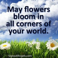 May Angels bless your life with blue skies and blooming flowers. ~ Karen Borga, The Angel Lady