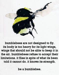 bumblebee #quote https://www.facebook.com/#!/DiMartinoChiropractic
