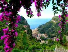 Bougainvillea view from Pontone over Amalfi, Italy. Photo by David van der Mark, Google+