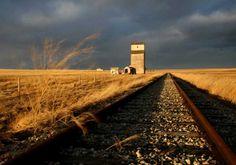Train Tracks in the Prairie Teacher Inspiration, Train Tracks, Color Photography, Railroad Tracks, Life, Landscapes, Design, Stone, Paisajes