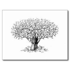 dibujos de arboles bonsai a lapiz - Buscar con Google
