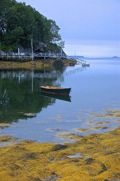 I don't think I've ever seen the water this calm before. It depth and textures in this image really add a lot to it! Harpswell, Maine (Photo - Jenni Hypes)