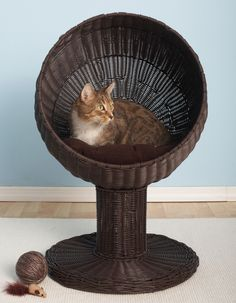 Found at Wayfair Supply - Kitty Ball Hooded Cat Bed / I can do that somehow...!