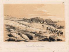 """""""Chañaral de las Animas"""". Viaggio nel Deserto di Atacama (Cile) del 1853-54. #viaggi #cile #atacama #esplorazioni #illustrazioni"""