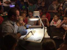 DNA Extraction Workshop Charlotte, North Carolina  #Kids #Events