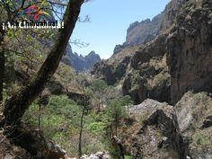 TURISMO EN BARRANCAS DEL COBRE. La  Barranca de Candameña, es una de las siete barrancas que conforman el complejo denominado Barrancas del Cobre, cuenta con una profundidad de 1750 metros y se encuentra enclavada en el Parque Nacional Cascada de Basaseachi, a 276 kilómetros al oeste de la capital del Estado de Chihuahua. ¡No deje de visitar este imponente lugar durante su próxima visita a Chihuahua!  . #turismoenchihuahua