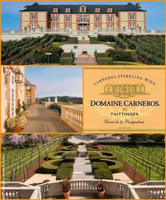 Domaine Carneros Vineyard, Sonoma County CA Near to Napa the French chateau style winery has incredible sparkling champagnes and Pinot Noirs, beautiful location.