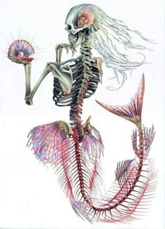Mermaid Skeleton Print This is a print of an original drawing created using colouring pencil and ink. The image measures approx. 8 x 10 The image Mermaid Skeleton, Skeleton Art, Mermaid Zombie, Halloween Mermaid, Skeleton Tattoos, Skeleton Bones, Human Skeleton, M Anime, Anime Art