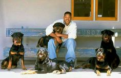 Will Smith and his #Rottweilers
