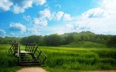 Kendinizi yeşilliklerin içerisinde hayal edin, dünya öyle daha güzel değil mi?
